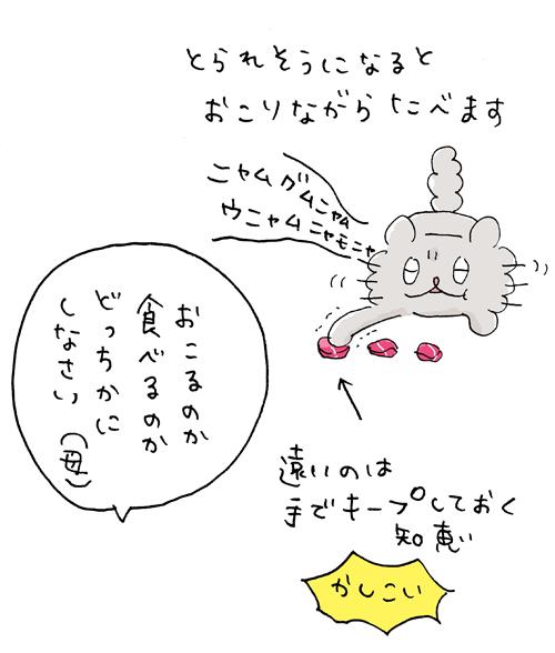 bu--osashimi3.jpg