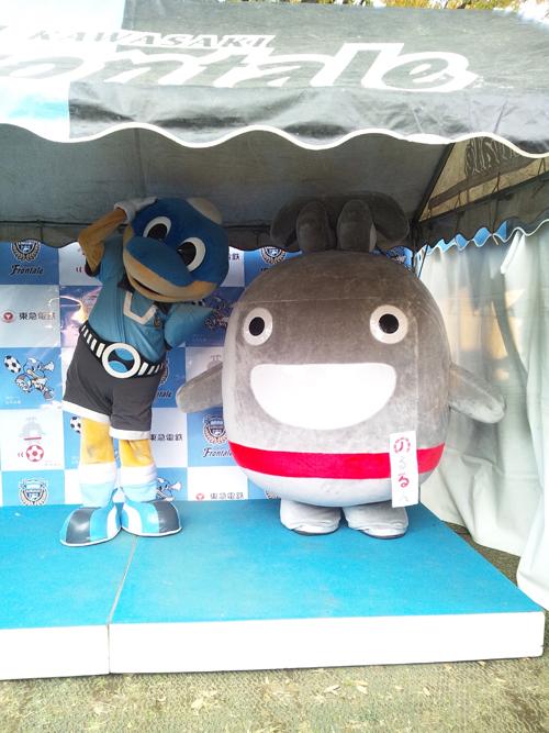 noru_todoroki02.jpg