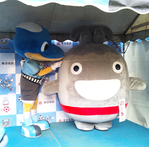 noru_todoroki03.jpg